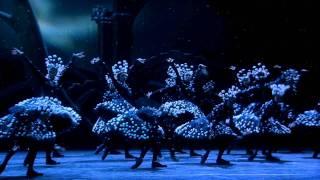 Ballet In Cinema 2010 11 1 78 VC 1 Tr