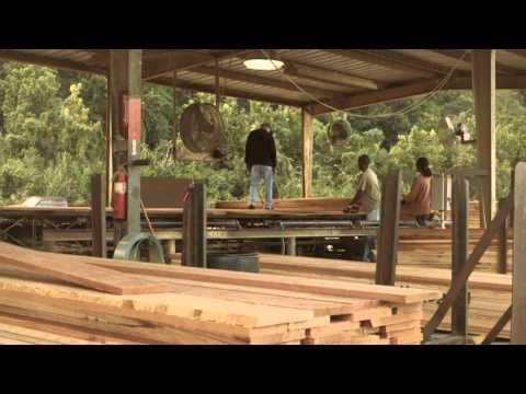 NHLA  Member  - J.M. Jones Lumber Company