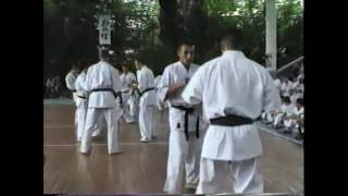 市川雅也師範の海外セミナーでの組手の動画です。