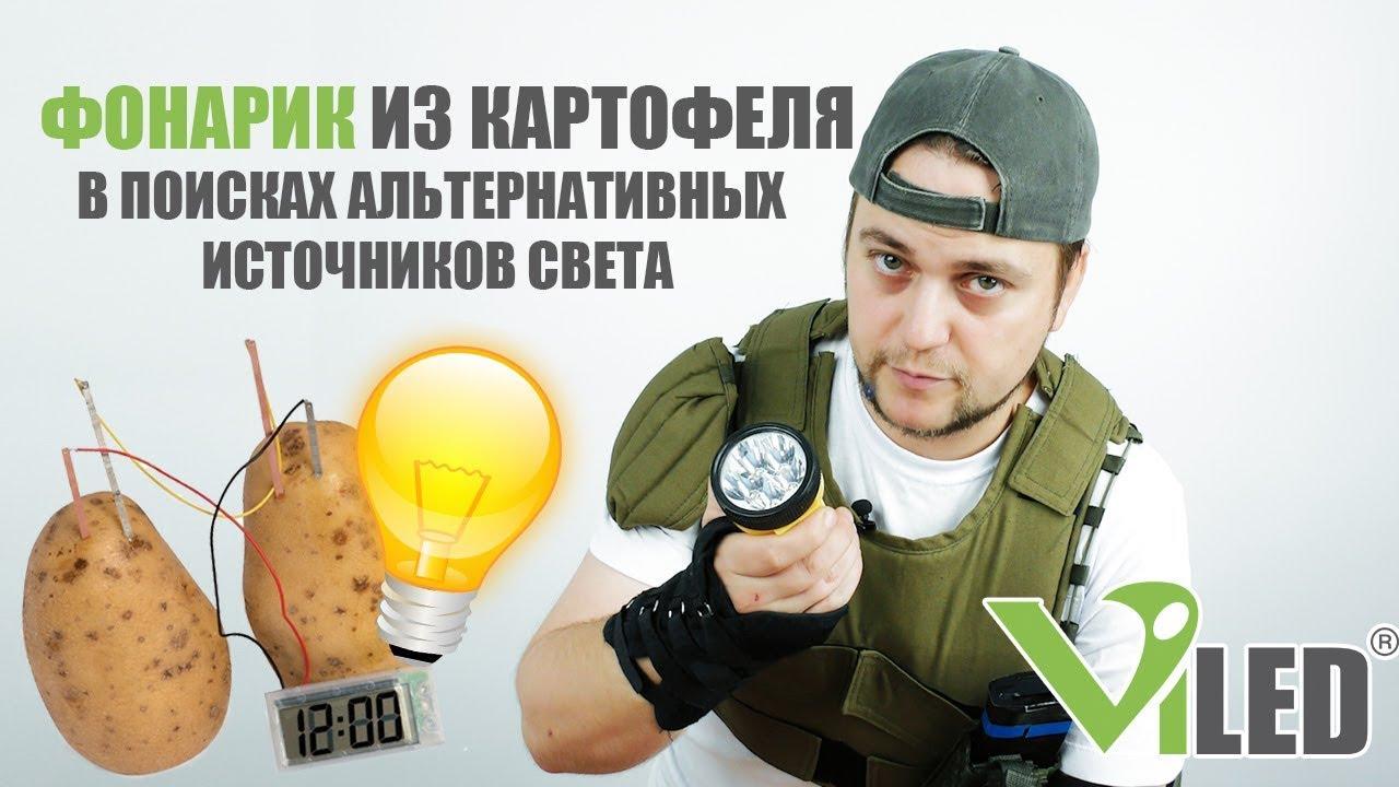Как получить электричество из картошки. Фонарик из картофеля