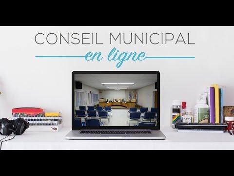Conseil municipal L'Anse-Saint-Jean - janvier 2017