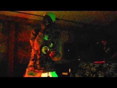 Jamaican Reggae Musician Kulcha Knox At The Stonehouse 9/15/13