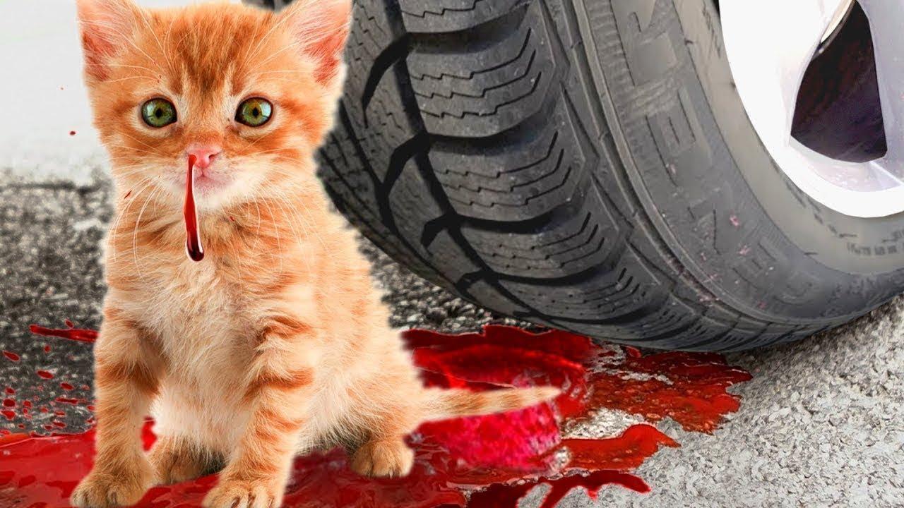 Crushing Crunchy & Soft Things by Car! EXPERIMENT Car vs Coca Cola, Fanta, Mirinda Balloons 2