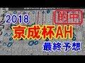京成杯オータムハンデ 2018 最終予想 【競馬予想】