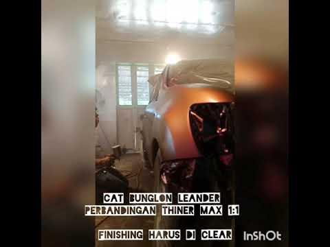 Proses step by step pengecatan cat bunglon chameleon paint Leander
