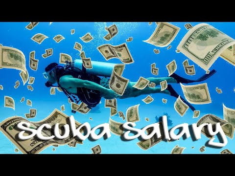 So What's A Realistic Scuba Diving Instructor Salary? Get Paid As A Scuba Instructor