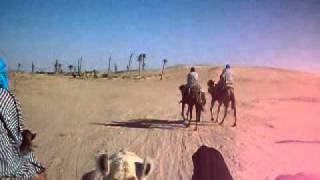 Sahara caravan!