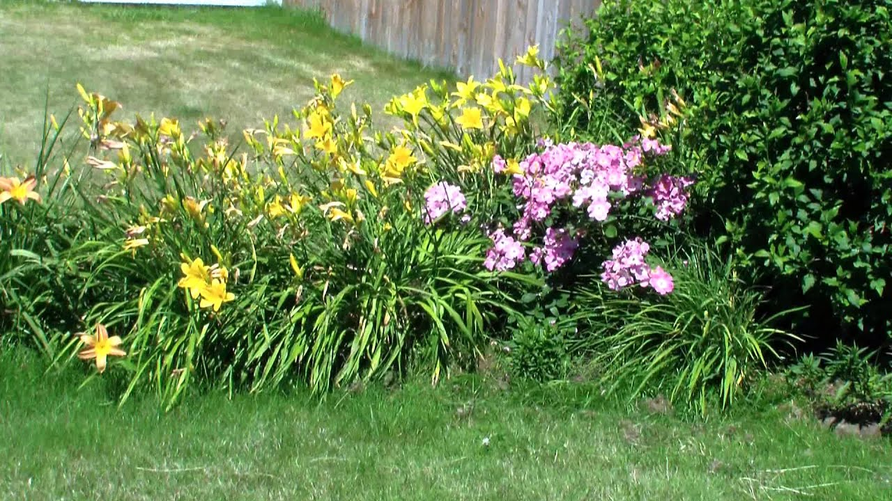 Pacific Northwest Usa Master Gardeners Series Front Yard Garden