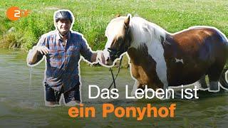 Arbeiten auf dem Reiterhof – Ferienjob-Tour mit Lutz und Fabian