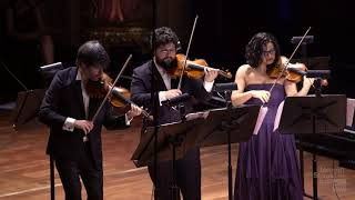 Johann Sebastian Bach - Concerto de Brandenburgo N.3. Solistas: Orquestra Johann Sebastian Rio