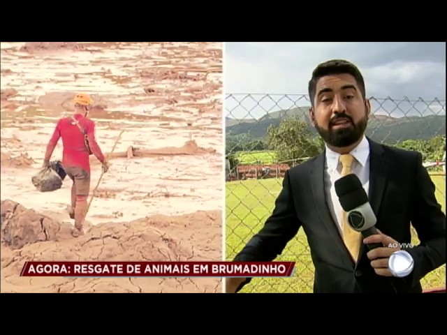 PRF explica como é feito o resgate dos animais em Brumadinho