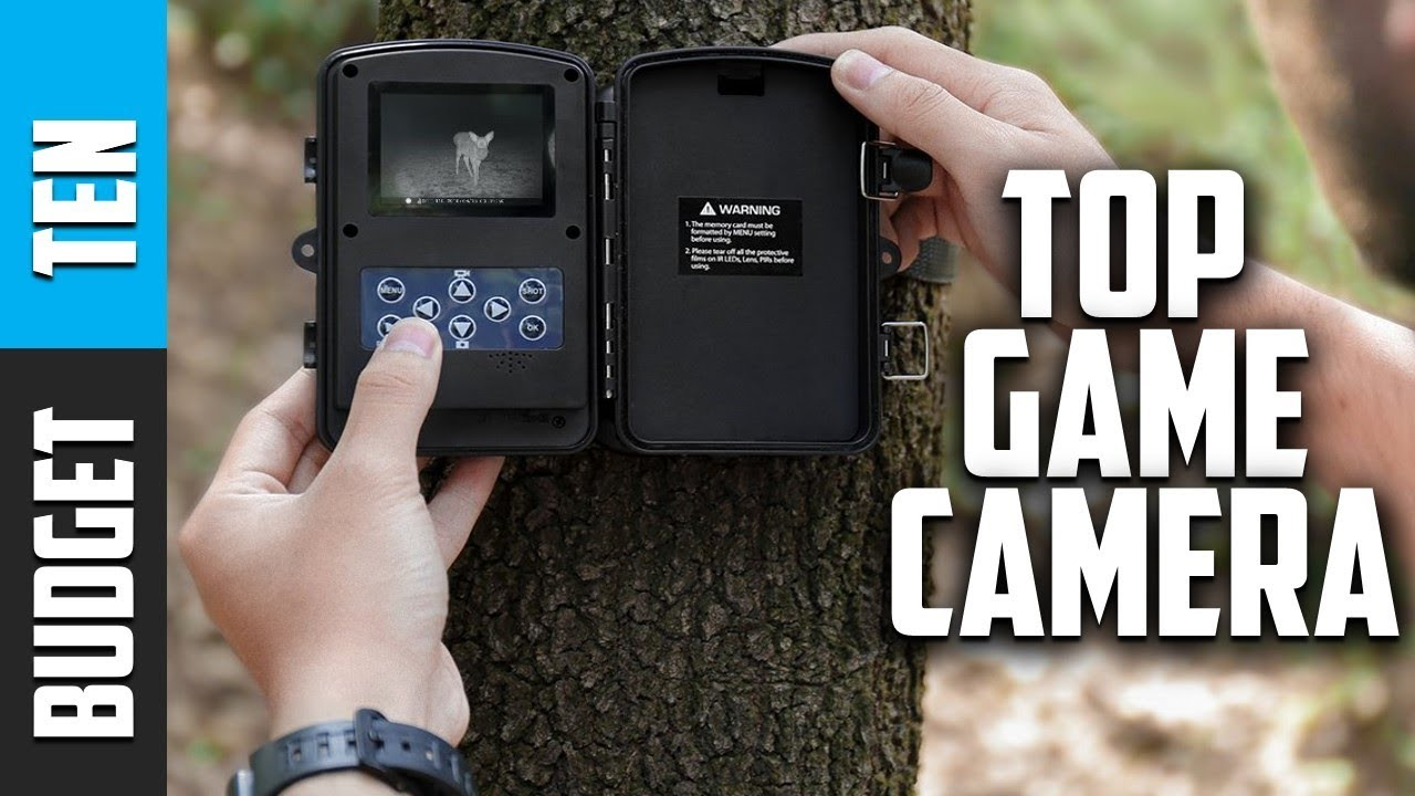 best budget trail camera 2019 Best Trail Camera 2019   Budget Ten Game Camera Review   YouTube