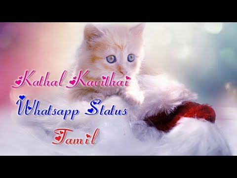 Kathal Kavithai Tamil Whatsapp Status Video (Love Quotes)  1280X720p HD