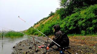 Рыбалка в дождь летом ПОТЕРЯЛИ НАДЕЖДУ НО ОН КЛЮНУЛ !!! (отзывы ТК ПЭК)