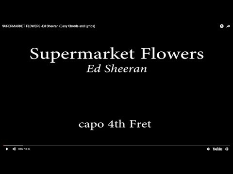 SUPERMARKET FLOWERS - Ed Sheeran (Easy Chords and Lyrics) 4th fret