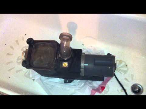 Marathon Motor Electric 3/4 HP Hayward Self Priming Marathon Jet Pump