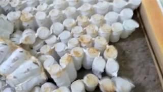 видео Матрасы DreamLine