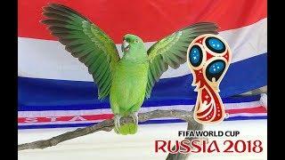 OE OE TICOS LORA RUSSIA 2018