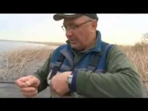 ловля синца на рыбинском водохранилище