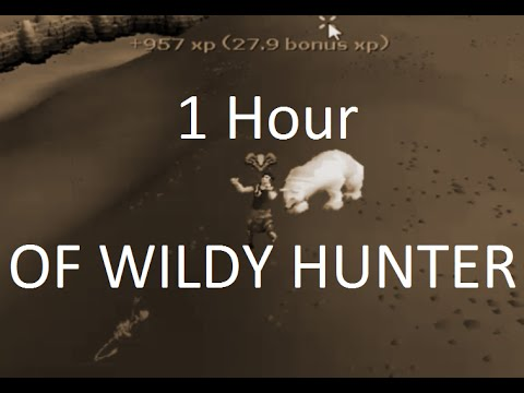 Testing Out New Wildy Hunter Moths