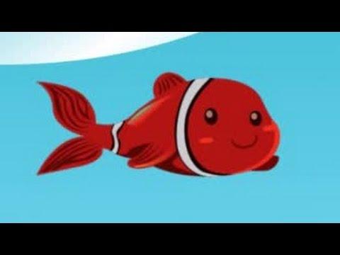 Kırmızı Balık Şarkısı - AfacanTV