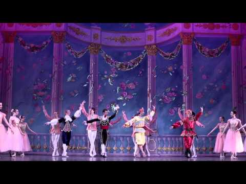 Moscow Ballet's Great Russian Nutcracker - Waltz of the Flow