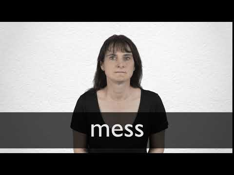 Mess definition and meaning | Collins English Dictionary