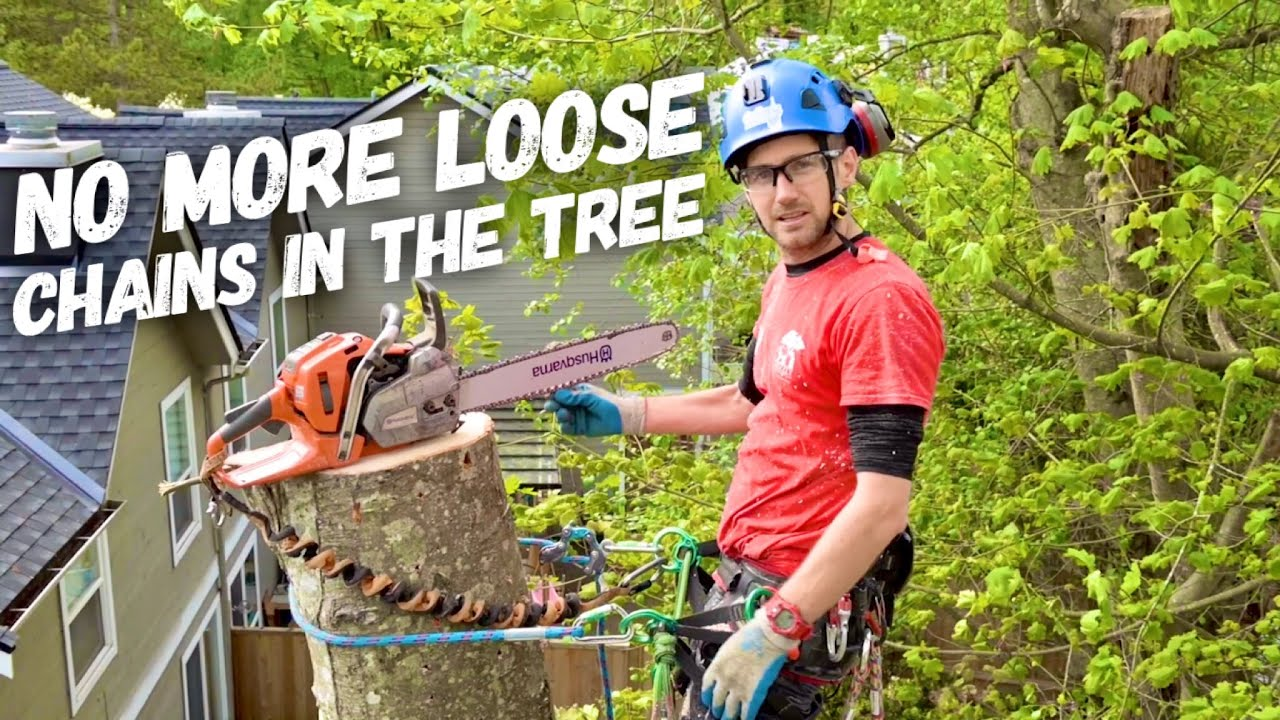 Arborist Pro Tip - Be equipped to tension a loose chain in the tree