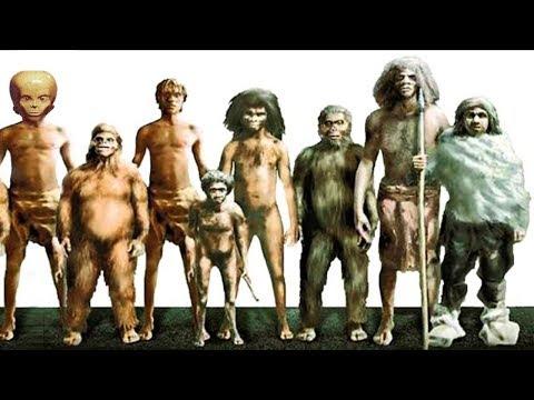 10 Geheimnisvolle, Ausgestorbene Menschliche Spezies!