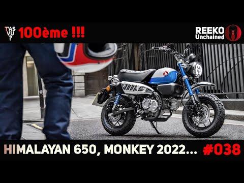 MONKEY 2022, HIMALAYAN 650, SUPERCUB 2022   NEWS MOTO 🔴REEKO Unchained