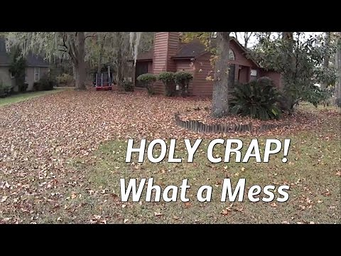 How Does Cross X Blade Mowing Work for Mulching Leaves? Timelapse Mowing
