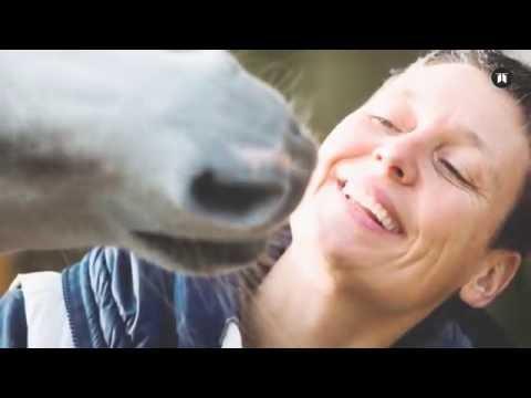 Buchtrailer Stephanie Arndt - Hauspferd Nasar