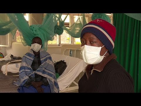 Finding better and quicker ways to tackle TB - futuris