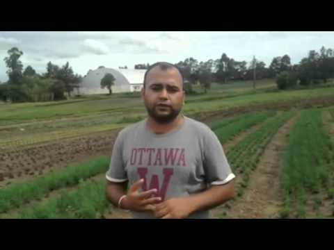 Agriculture land for sale in Paraguay, Investment in Paraguay