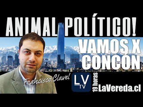 Candidatos por Concón y Casablalnca - en Animal Político