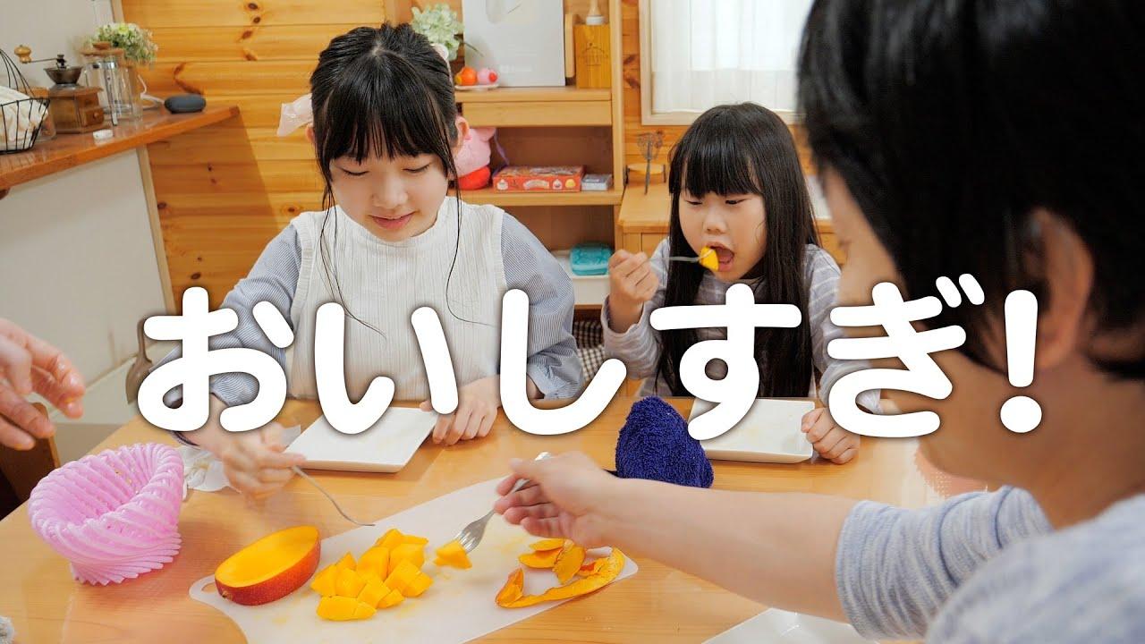 ふるさと納税で届いた宮崎の超高級マンゴーが美味しすぎた