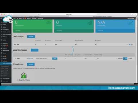 Integración de Mailrelay con Thrive Leads a través de API sin problemas