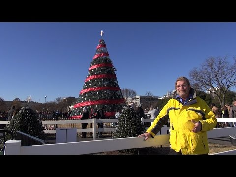 National Christmas Tree and Capitol Christmas Tree - REAL USA Ep. 131
