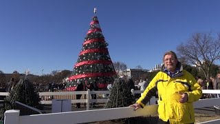 National Christmas Tree And Capitol Christmas Tree - Real Usa Ep. 131