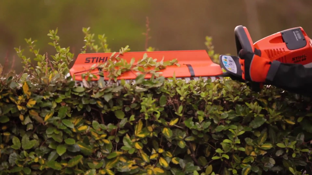 Top 5 Tips for getting the most from your Hedge Trimmer