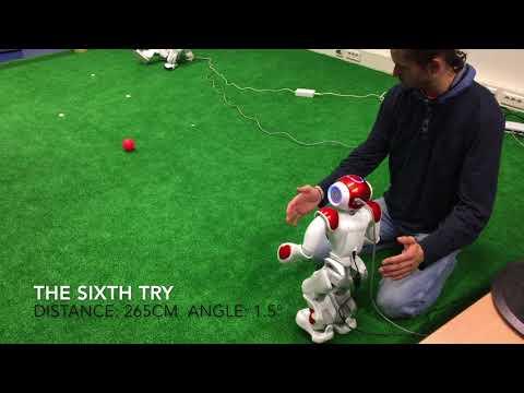 Kicking Project for Autonomous Systems Practical