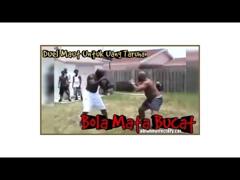 Video duel maut kimbo berujung bola mata pecah sebelah.. no clickbait (tonton sampai akhir) Mp3