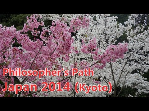 Philosopher's Path - Kyoto (Japan 2014)