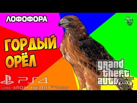 """GTA 5 (Next Gen) ОРЕЛ ТРЕВОР [Лофофора] Карта - 12/27 ► Gameplay """"Grand Theft Auto V"""""""