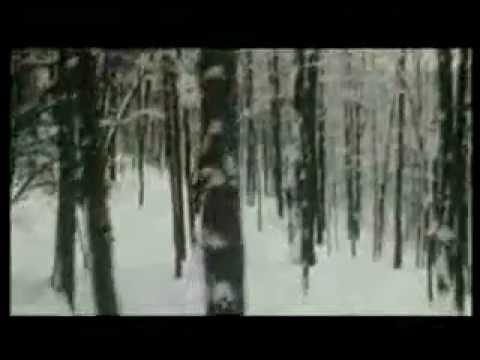 Wax Philosophic - Scream