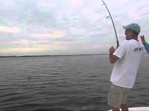 another giant redfish