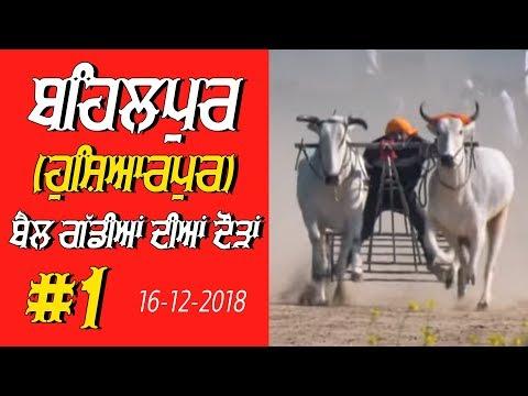 OX RACES #1 🔴 ਬੈਲ ਗੱਡੀਆਂ ਦੀਆਂ ਦੌੜਾਂ बैलों की दौड़ें  بیلوں کی دودن  at BEHALPUR Hoshiarpur - 2018