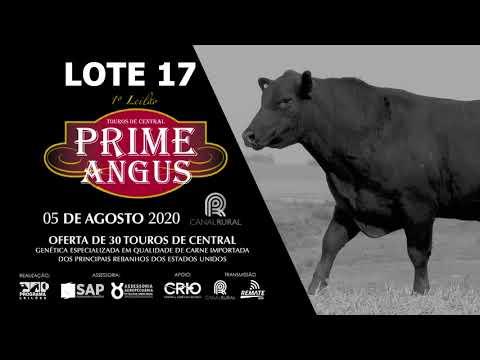 LOTE 17   BLACK OPAL TE909  348 Prod  Agência El Campo