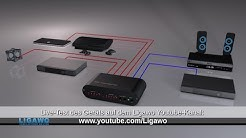 Ligawos Problemloeser: SPDIF Toslink Matrix 4x2, HDMI Audio Switch 2CH/ stereo