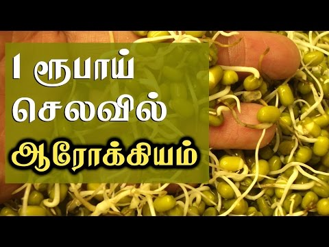 Benefits of Eating Sprouts for Weight Loss - Weight Loss Tips in Tamil